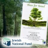 Link to Plant Trees in Israel